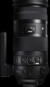SigmaS 150-600mm f/5-6.3 S DG OS HSM Nikon