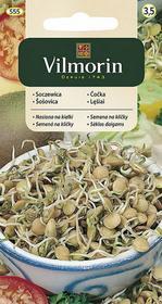 Vilmorin Soczewica nasiona na kiełki 20g