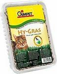 Gimpet Hy Gras - trawa dla kota