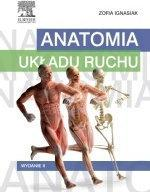 Z. Ignasiak Anatomia układu ruchu Wydanie II Książka