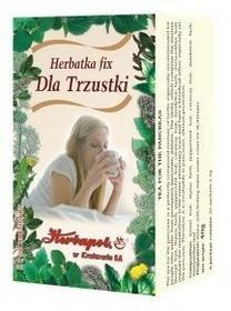 Herbatka Dla trzustki Fix x 20 /H.Krakow