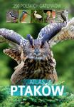 Opinie o Dominik Marchowski Atlas ptaków - PDF