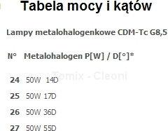 Cleoni Reflektor ALMENTI E 1x50W - Biały (T096E1Tm117-2) -