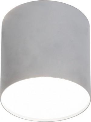 Nowodvorski Spot plafon Lampa natynkowa downlight Plexi M 1x20W E27 Srebrnyy 652 (6527)