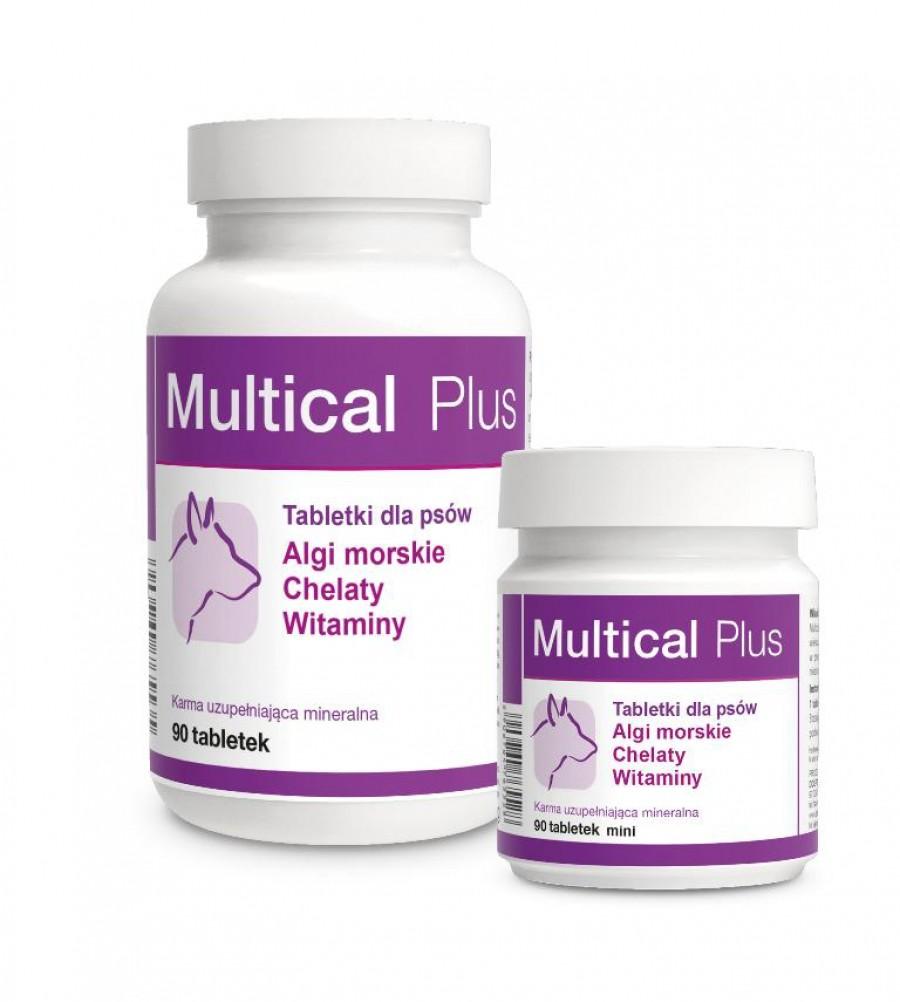 Dolfos Dolvit Multical Plus DOG 90 tabletek