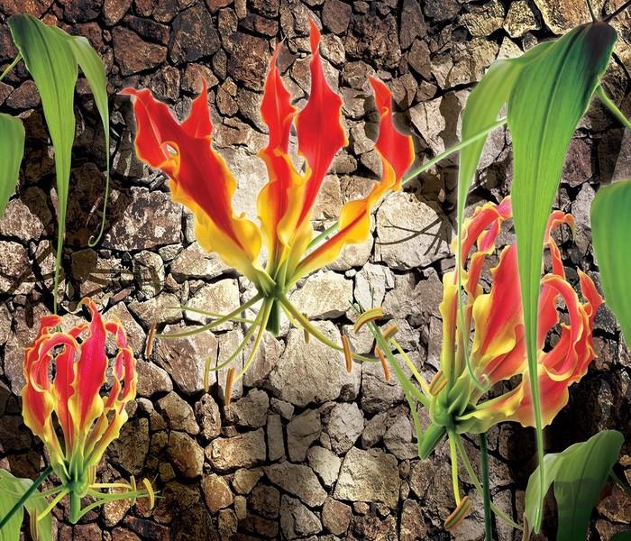 Fototapeta Czerwone lilie na kamiennym tle 1392