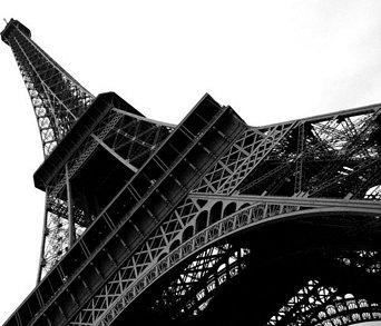 Komar Paryż, Wieża Eiffel - fototapeta