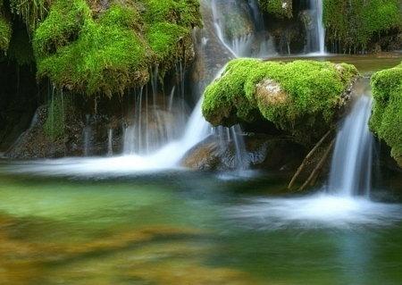 Komar Leśny Wodospad - fototapeta