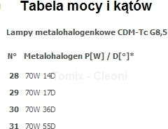 Cleoni Reflektor ALMENTI E 1x70W - Biały (T096E2Tm117-3) -