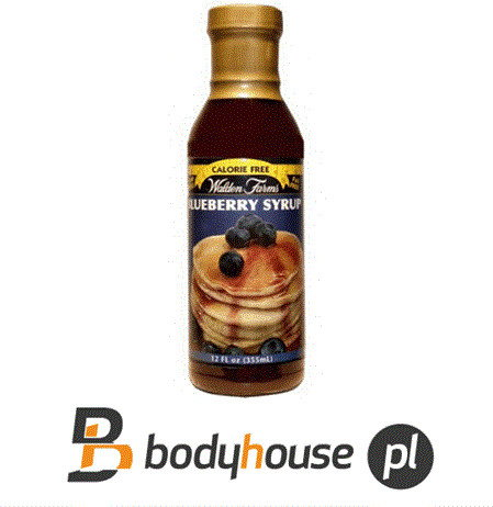 Walden Farms Syrup 355ml - Blueberry. 0389