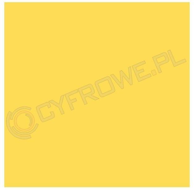 Colorama kartonowe 1,35x11m - Dandelion CO516