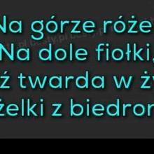 Agnieszkad7 kobieta Sosnowiec -  Trzeba być twardym jak żelki z Biedronki