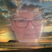 BK1951 kobieta Orzesze -  zawsze do przodu