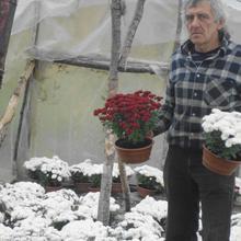 ogrodnik60 mężczyzna Morąg -