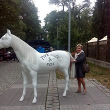 beatom64 kobieta Tomaszów Mazowiecki -  jestem fajna tak mówią