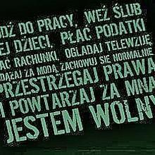 """betamesh mężczyzna Grudziądz -  """"Everybody lies""""..."""