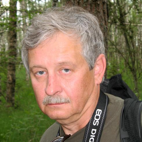 zdjęcie Seeling, Gorzów Wielkopolski, lubuskie