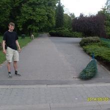 Tomek44 mężczyzna Katowice -  Mały krok potrafi zmienić całe życie