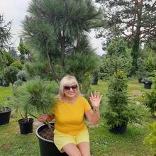 mery100 kobieta Biłgoraj -  Życie to nie jest bajka .........
