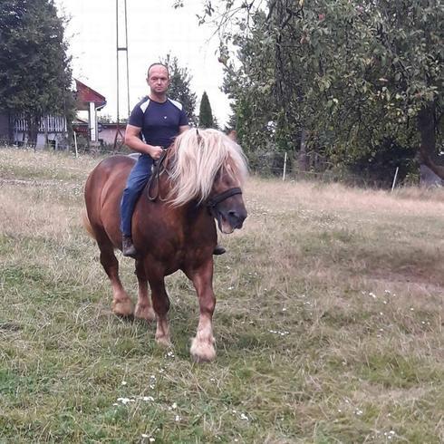 batman10 Mężczyzna Pruchnik -
