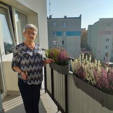 Zofia1952 kobieta Ozimek -  Lubię kwiaty i podróże.