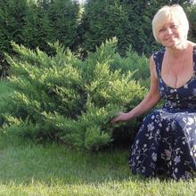 ewka57 kobieta Szprotawa -  Lubie zapach pomarańczy :)