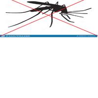 Koalicja przeciw komarom