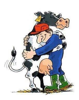 Bo my kochamy krowy ♥
