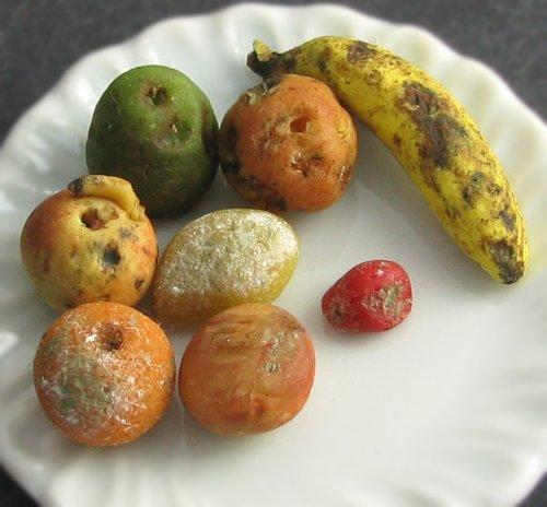 zgnile-owoce.jpg