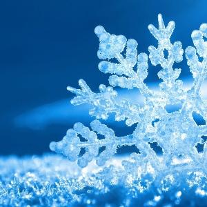 Pan Śnieżynka