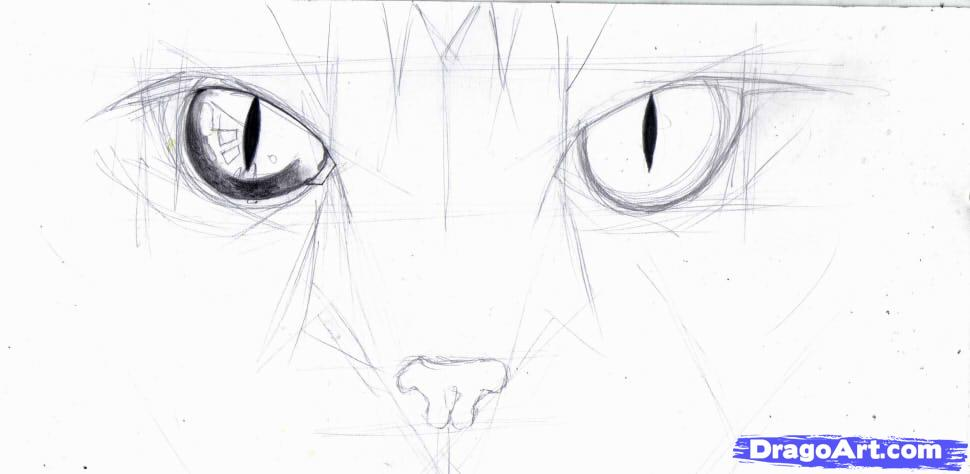 how-to-draw-cat-eyes-step-4_1_000000146535_5.jpg