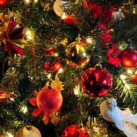 ♥Święta Bożego Narodzenia ♥