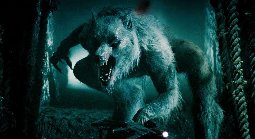 Wilki z Ciemnego Lasu Ghejrejskiego