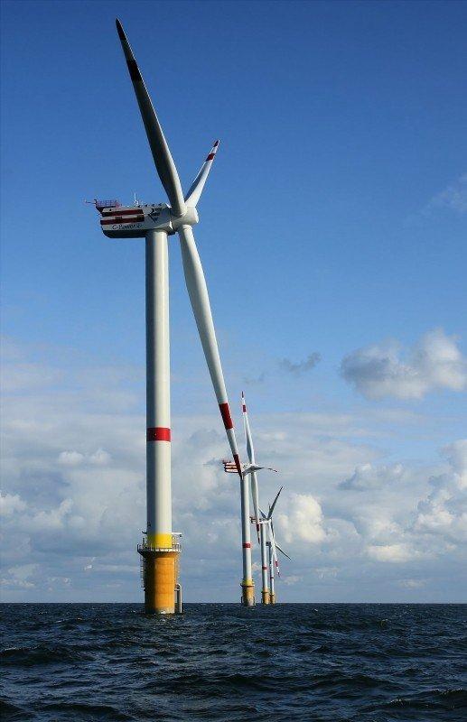 windmills-d1-d4-thornton-bank-1.jpg