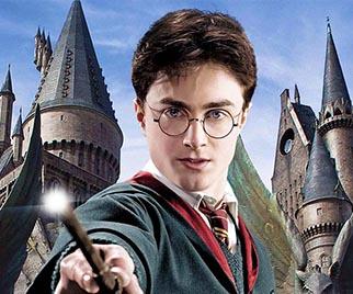 "Fani filmu ""Harry Potter"""
