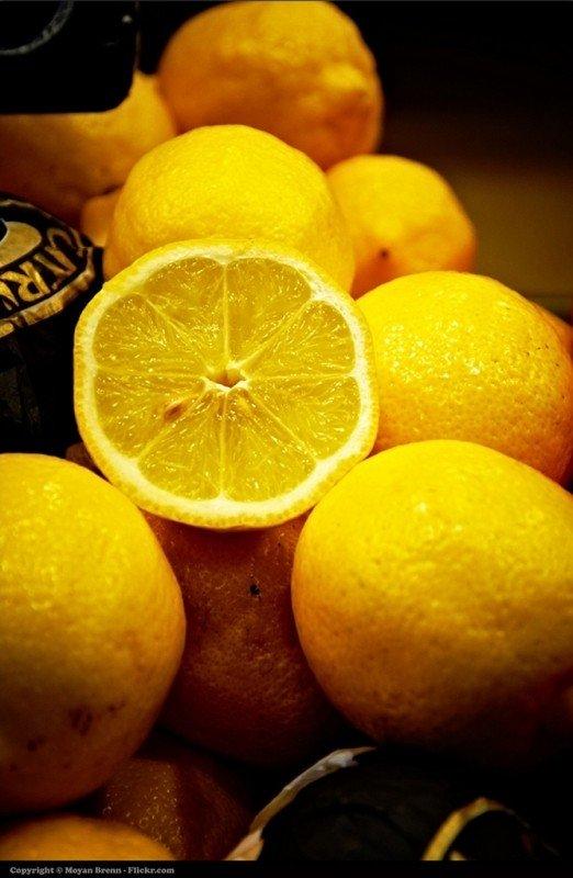 lemon-28.jpg