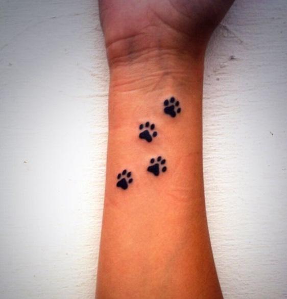 Który Tatuaż Psie łapki Najładniejszy Zapytajonetpl