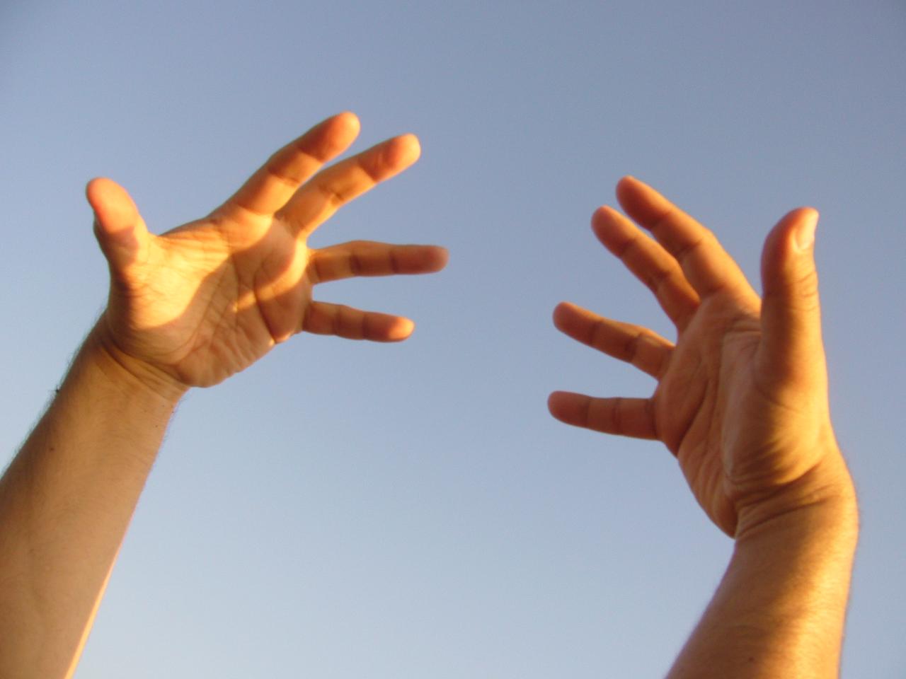 071228_human_hands.JPG