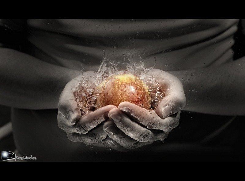 apple-splash-1.jpg