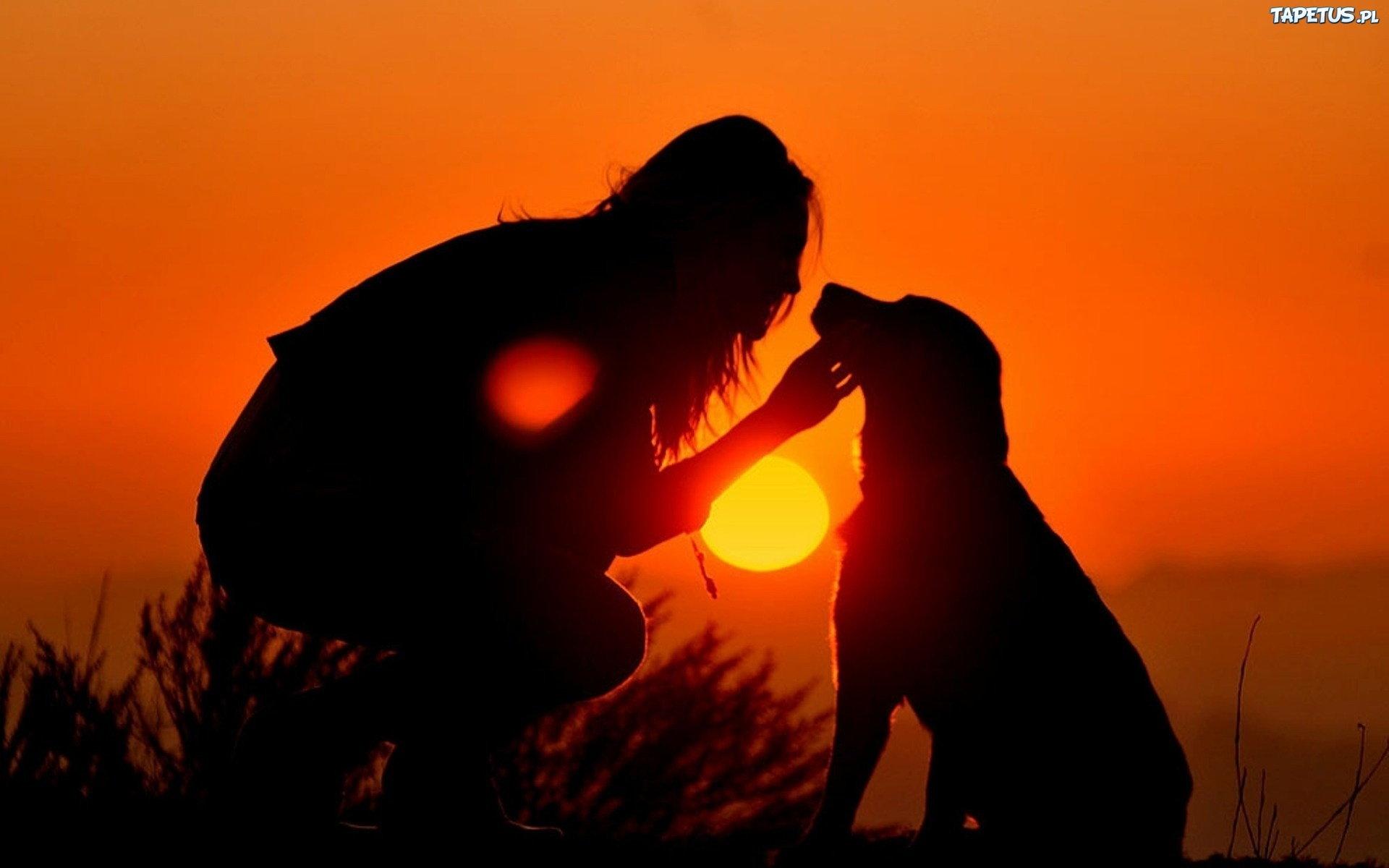 Zwierzęta - Nasza pasja ♥♡♥