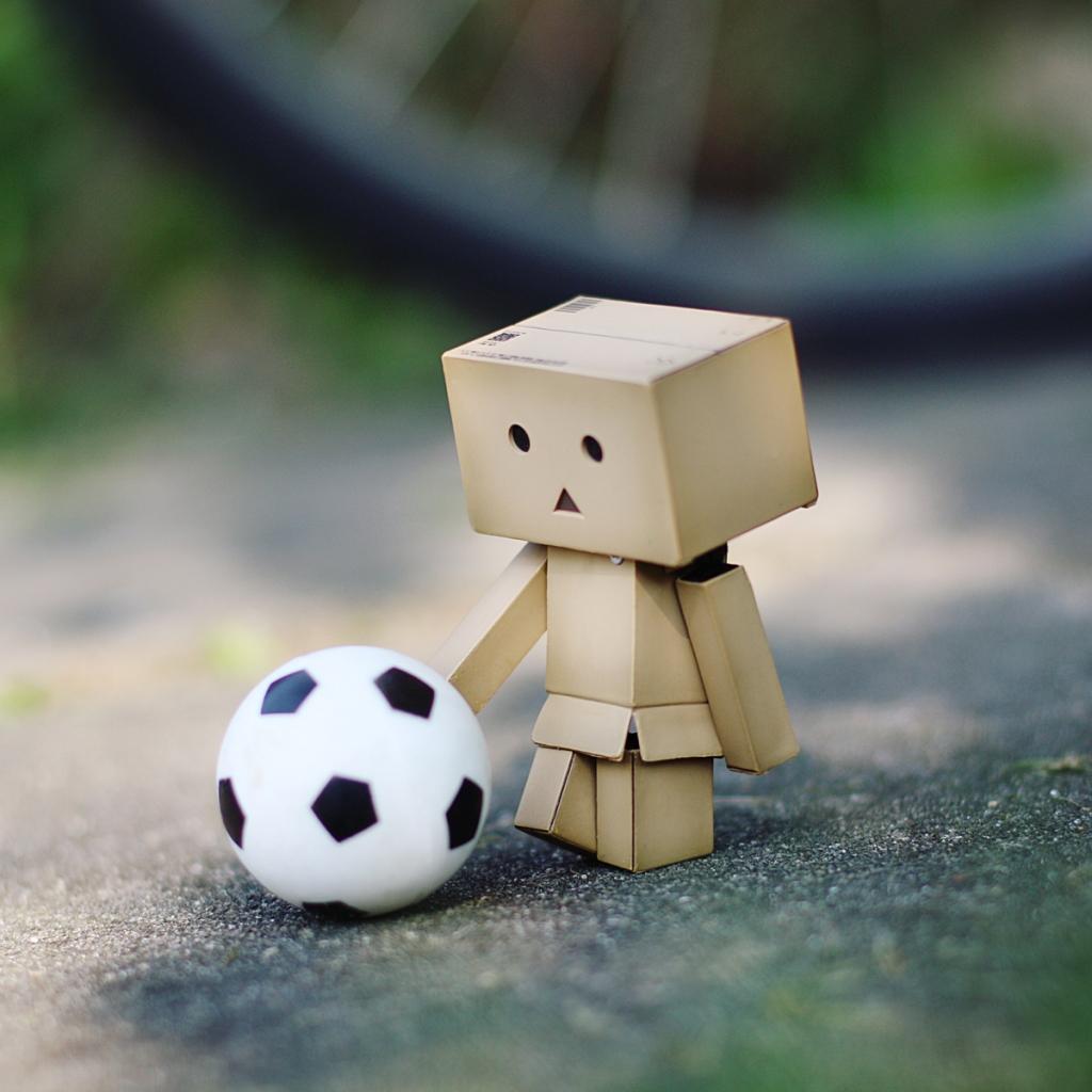 danbo-football.jpg