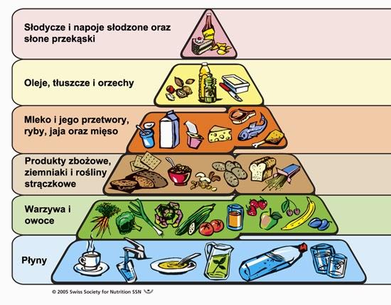 piramida-zywienia1.jpg