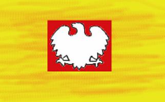 Narodowi Polscy Idioci