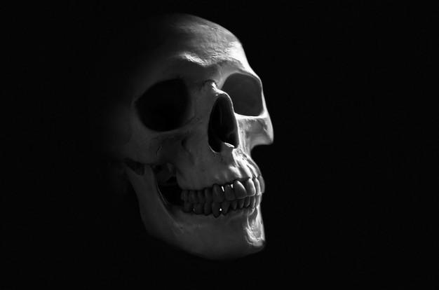 Fani zjawisk paranormalnych ((: [Reaktywacja]