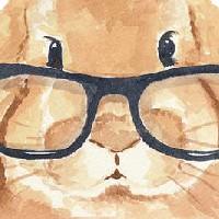 Miłośnicy i posiadacze królików