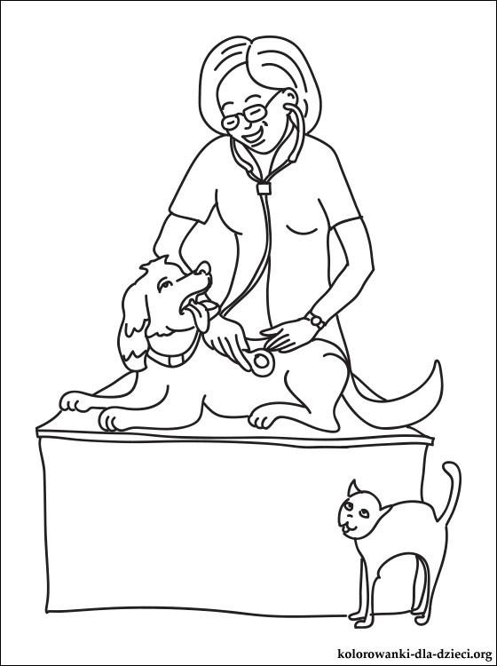veterinary--physician.jpg