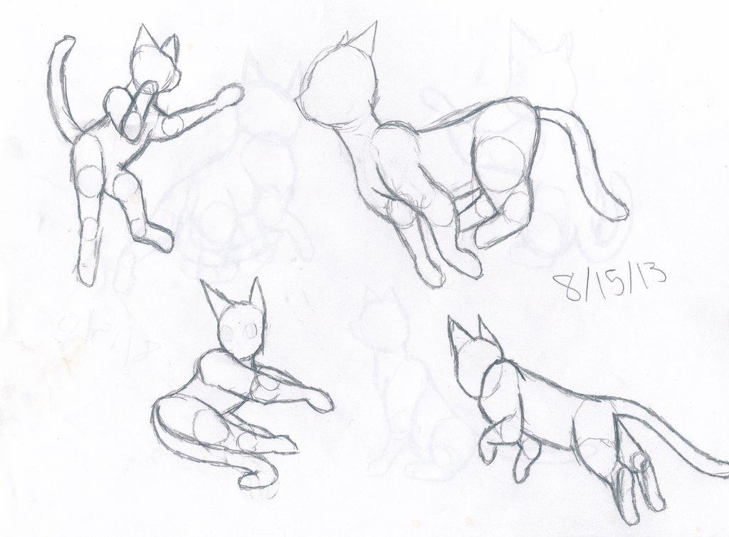 cat_anatomy_practice_1_by_thelongdreamer-d6j70qi.jpg