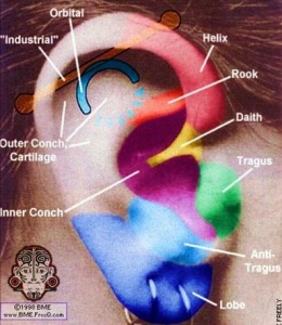 ear-cartilage-piercing-260x300.jpg