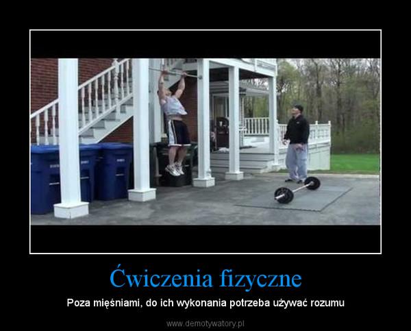 1356140981_zkvqio_600.jpg