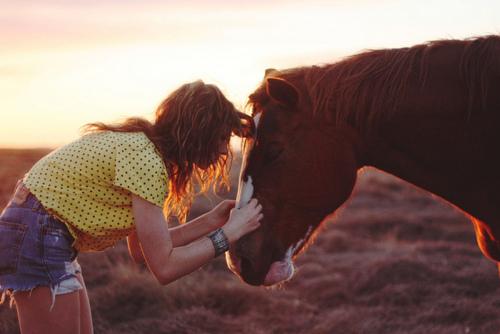 ;3 Kochamy Konie Oraz Kucyki :3